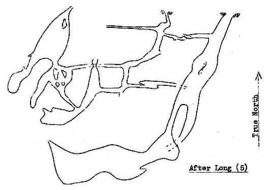 Figure 1 – Simplified Survey of Major Passages of Holwell Cavern, Long (5)